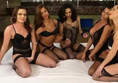 Tranny group-sex fro 5 hot t-girls added to a handful of lucky guy